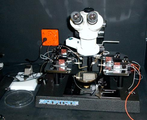 The manual probe station.