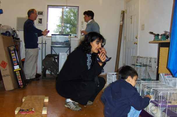Faranak and Neakon Kargar feed treats to the rats.